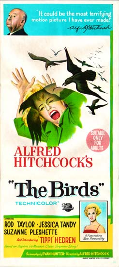 Birds, The Australian Daybill movie poster