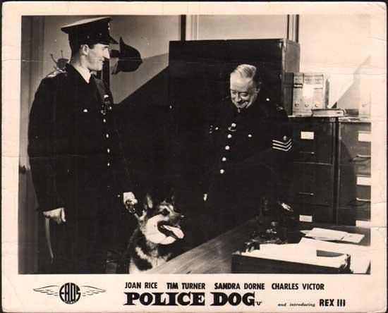 Police Dog UK FOH Still