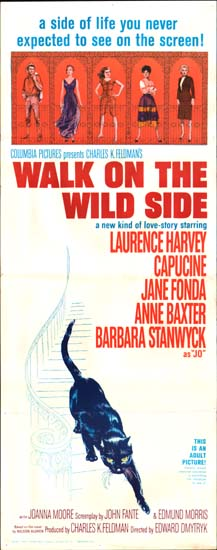 Walk on the Wild Side US Insert movie poster